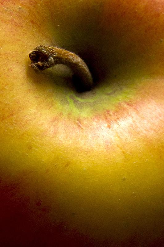 2012 Fruit